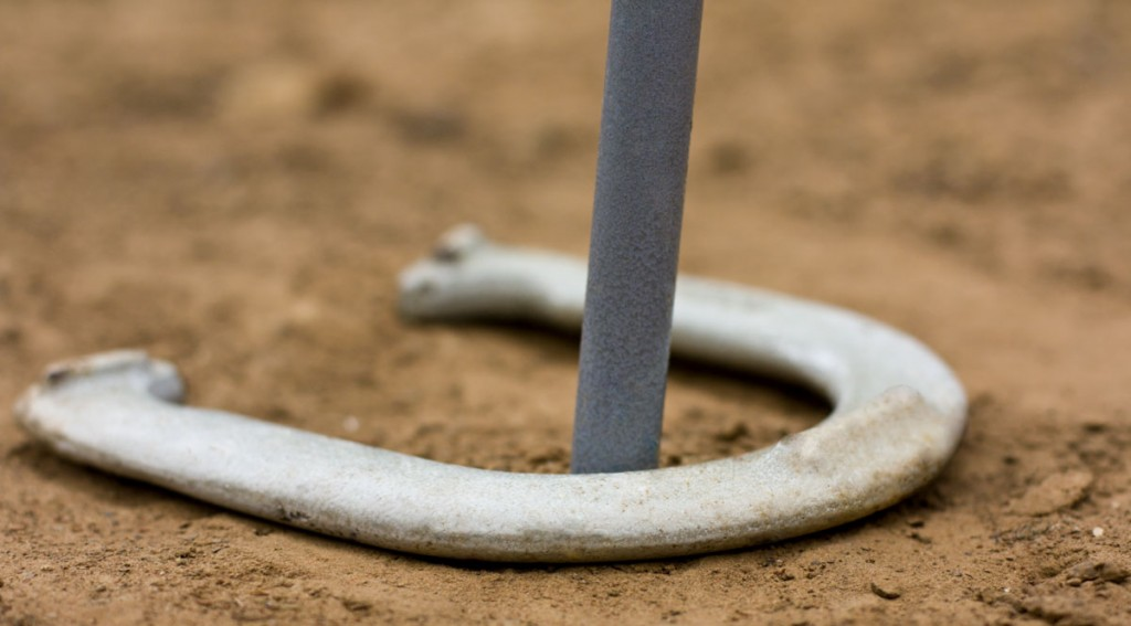horseshoes-game-sm